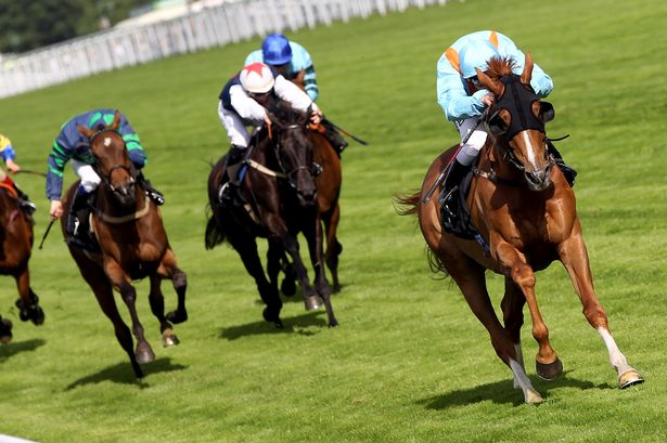 Horse racing on Bet365